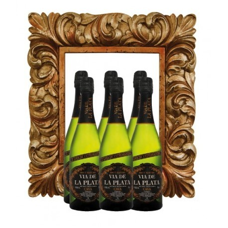 CAVA VIA DE LA PLATA BRUT NATURE COUPAGE
